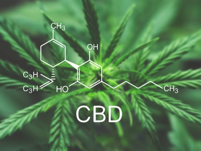 CBD For Beginners – A Guide To Getting Started With CBD