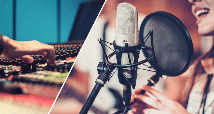 Art of Dubbing Voice Meaning And Access To Quality Media